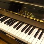 Sauter 4